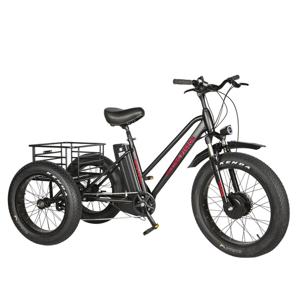 FP-ETRK1909   Electric fat tire tricycle