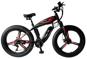26 FAT E-BIKE( FP-EB004)