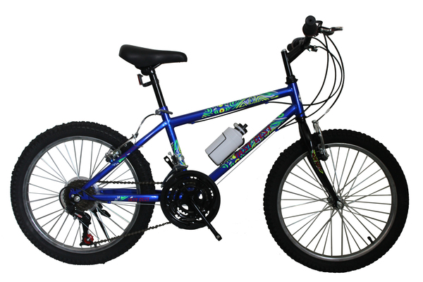 "20"" Mountain Bicycle(FP-MTB2005)"