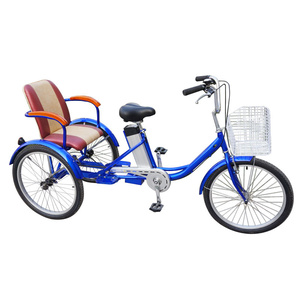 "FP-ETRK1911   24"" E-trike with rear seat"